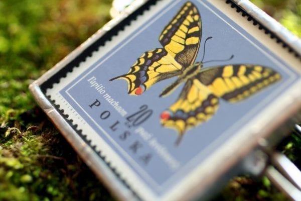 Dzikie Twory - broszka ze znaczkiem pocztowym motyl paź królowej