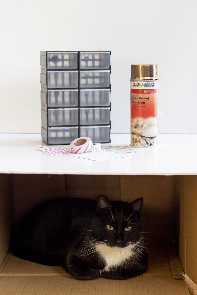 Dzikie Twory - materiały potrzebne do ozdobienia organizera oraz kot pilnujący planu zdjęciowego