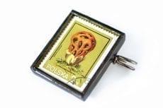 Dzikie Twory broszka ze znaczkiem pocztowym z 1980 roku -grzyb okratek czerwony1